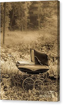 Babe In The Woods Canvas Print by Edward Fielding