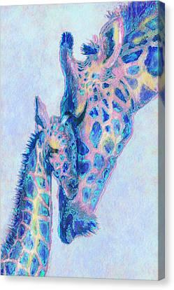 Baby Blue  Giraffes Canvas Print