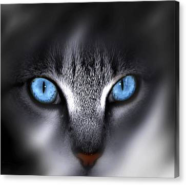 Face Canvas Print - Baby Blues by Cecil Fuselier