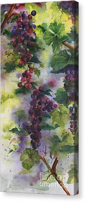 Baby Cabernet I  Triptych  Canvas Print by Maria Hunt