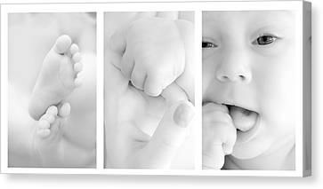 Baby Details Canvas Print by Jaroslaw Grudzinski