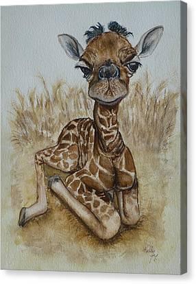New Born Baby Giraffe Canvas Print