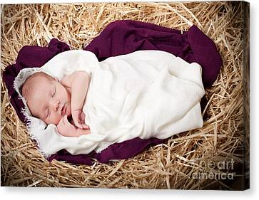 Baby Jesus Nativity Canvas Print by Cindy Singleton