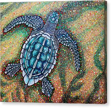Baby Leatherback Sea Turtle Canvas Print