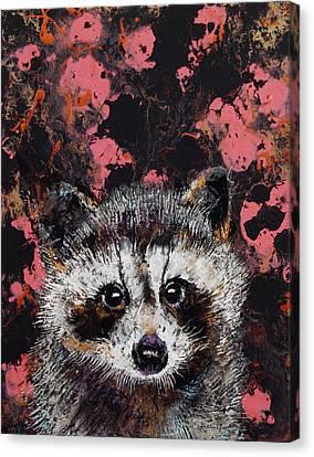 Raccoon Canvas Print - Baby Raccoon by Michael Creese