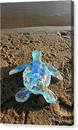 Canvas Print - Baby Sea Turtle From The Feral Plastic Series By Adam Long Sculp by Adam Long