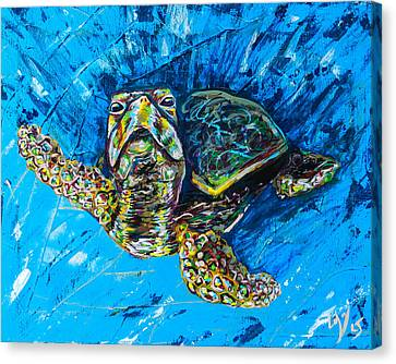 Baby Turtle Canvas Print by Lovejoy Creations