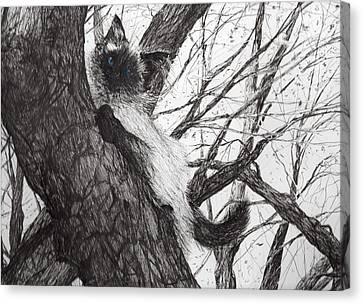 Apple Canvas Print - Baby Up The Apple Tree by Vincent Alexander Booth