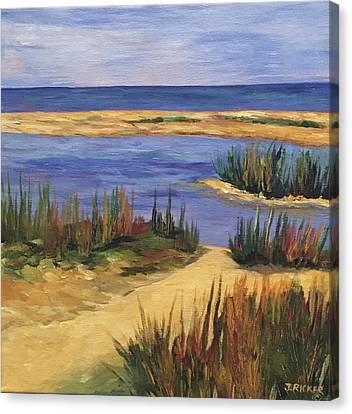 Back Bay Beach Canvas Print