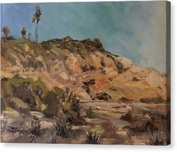 Back Bay Cliff 1 Canvas Print