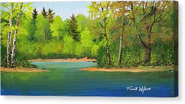 Back Country Pond Canvas Print by Frank Wilson