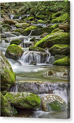 Back Country Stream Canvas Print by Jon Glaser