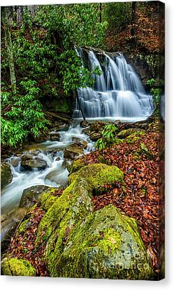 Back Fork Waterfall  Canvas Print