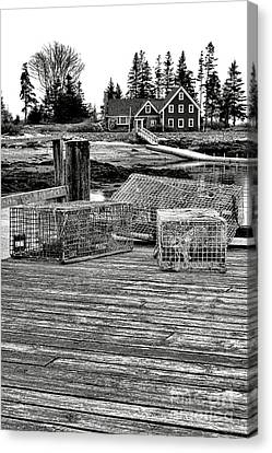 Back In Maine Canvas Print by Olivier Le Queinec