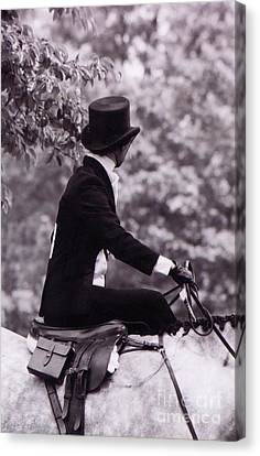 Back Of The Side Saddle Canvas Print