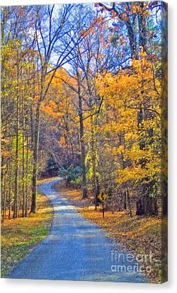 Canvas Print featuring the photograph Back Road Fall Foliage by David Zanzinger