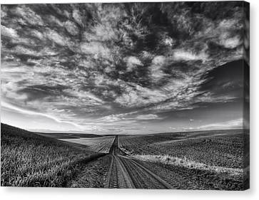 Back Road Solitude Black And White Canvas Print
