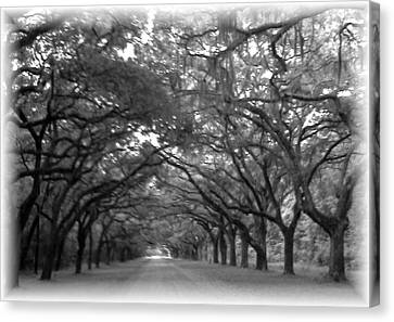 Back Roads Canvas Print by Kim Zwick
