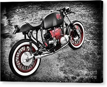 Back To Basics Canvas Print by Tim Gainey