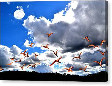 Back To Home Canvas Print by Anand Swaroop Manchiraju