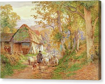 Back To The Fold Canvas Print by Charles James Adams