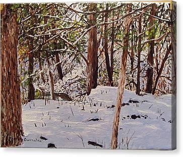 Back Yard Snow Canvas Print by Sharon  De Vore