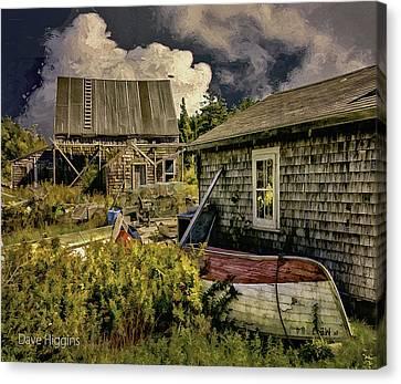 Back Yard, Stonington, Maine Canvas Print by Dave Higgins
