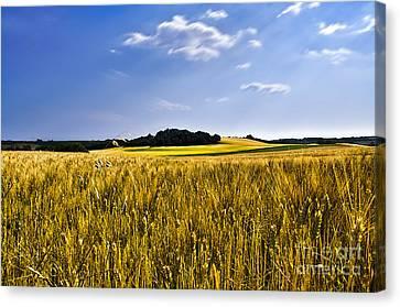 Background Canvas Print by Alessandro Giorgi Art Photography
