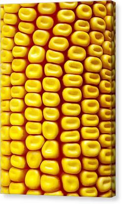 Background Corn Canvas Print by Carlos Caetano