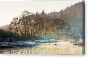 Backlit Trees On The River Brathay Canvas Print