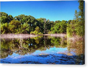 Backwoods By The Lake Canvas Print