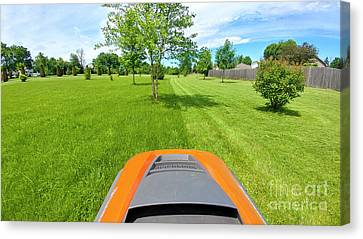 Canvas Print featuring the photograph Backyard Mowing by Ricky L Jones