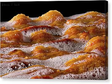 Bacon Canvas Print by Warren Sarle