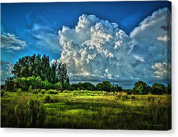Bad Weather Canvas Print by Marvin Spates