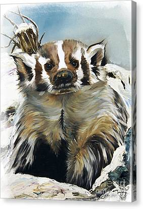 Badger - Guardian Of The South Canvas Print by J W Baker