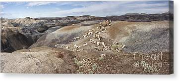 Badlands In Petrified Forest Canvas Print by Melany Sarafis