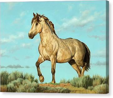 Badlands Mustang Canvas Print