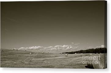 Bailing Time Canvas Print