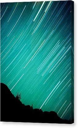 Baja Starry Night Canvas Print by Benjamin Garvey