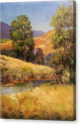 Bakesfield Creek Afternoon Canvas Print
