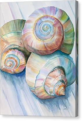 Seashells Canvas Print - Balance In Spirals Watercolor Painting by Michelle Wiarda-Constantine