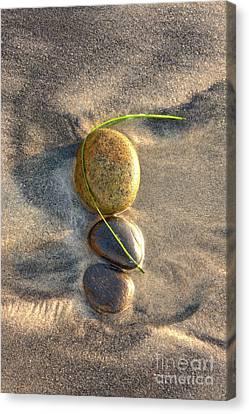 Balance Of Nature Canvas Print