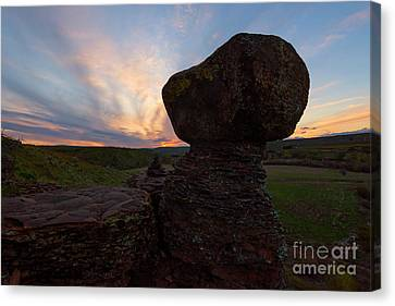 Canvas Print featuring the photograph Balanced by Mike Dawson