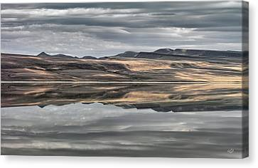 Balanced Reflection Canvas Print by Leland D Howard