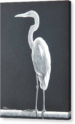 Balancing Act Canvas Print by Diane Cutter