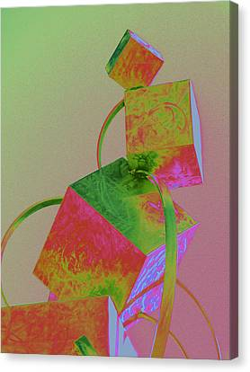 Balancing Act Canvas Print