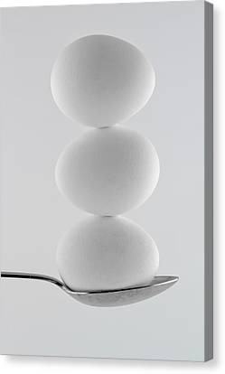 Balancing Eggs Canvas Print by Gert Lavsen