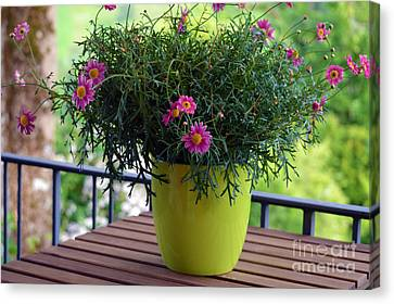 Canvas Print featuring the photograph Balcony Flowers by Susanne Van Hulst