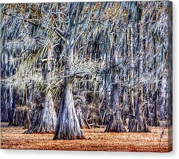 Canvas Print featuring the photograph Bald Cypress In Caddo Lake by Sumoflam Photography