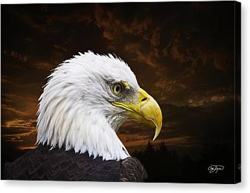 Eagle Canvas Print - Bald Eagle - Freedom And Hope - Artist Cris Hayes by Cris Hayes